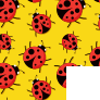 Yellow Ladybugs