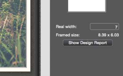 How to Produce an ImageFramer Design Report