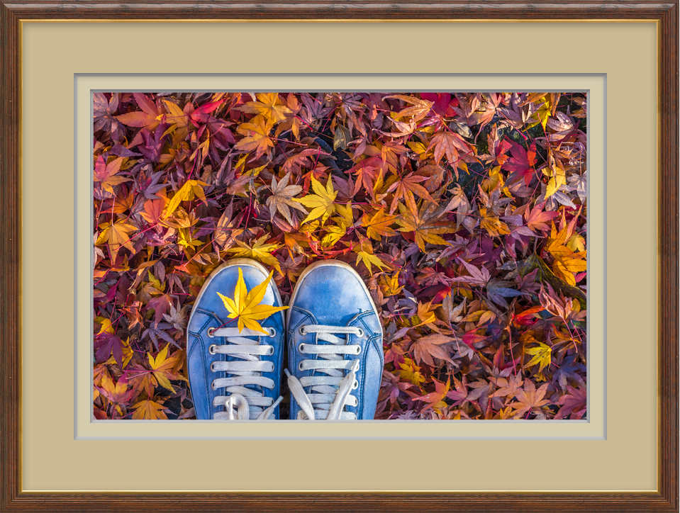 Make matting interesting with ImageFramer