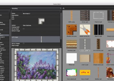 Frame Editor